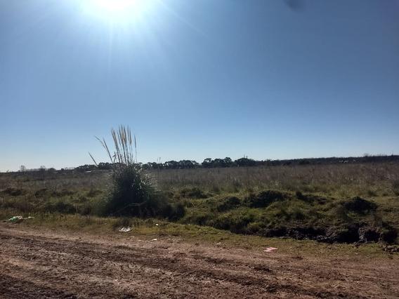 Cañuelas , Gran Loteo Autopista Ezeiza Cañuelas .