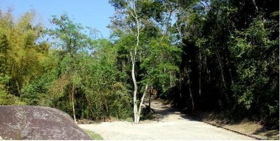 Terreno Residencial À Venda, Vila Progresso, Niterói. - Te0033