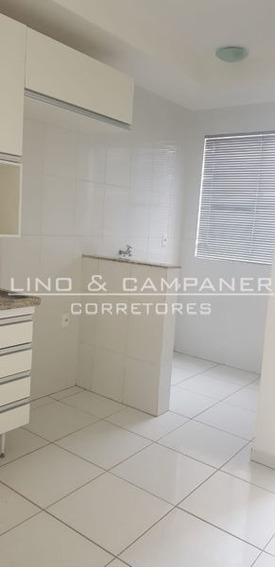 Apartamento Padrão Com 2 Quartos - 950408-l