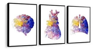 Quadro Decorativo Medicina Anatomia Coração Consultório Lind
