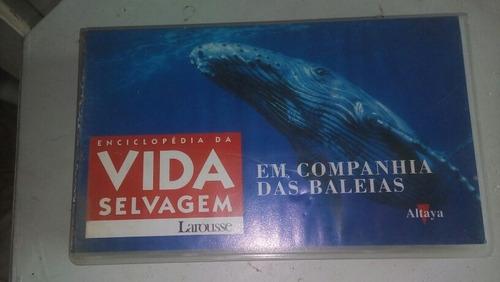 Fita Vhs Enciclopedia Da Vida Selvagens Baleias