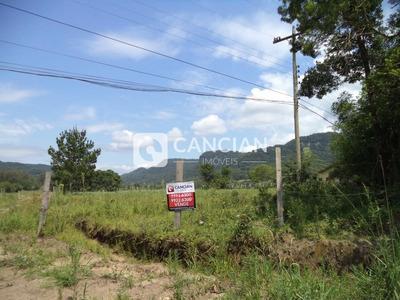 Rural - Zona Rural, Arroio Grande / Rio Grande Do Sul - 9258