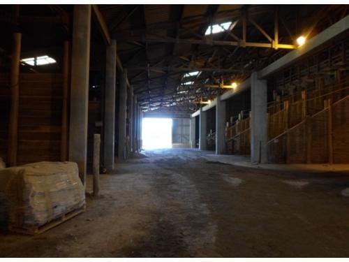 Barracão Comercial À Venda, Centro, Pederneiras - Ba0025. - Ba0025