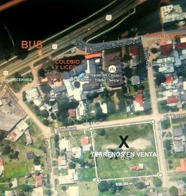 Esquina, Alto, Limpio Y Parejo, A 100 M. Del Bus Y Ruta 11