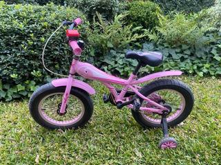 Bicicleta Fat Bike Sbk Rod 16 Niñas