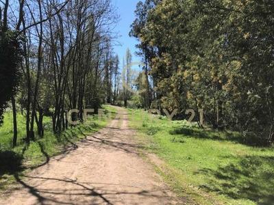 Fundo La Chispa