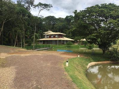 Sítio Rural À Venda, Estação, Ascurra. - Si0010