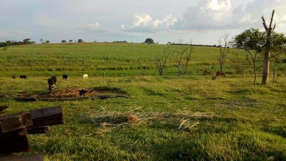 Sítio Em Zona Rural, Guararapes/sp De 160m² 4 Quartos À Venda Por R$ 600.000,00 - Si101064
