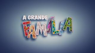 Dvds Serie A Grande Família - 1ª A 6ª Temporadas Completas