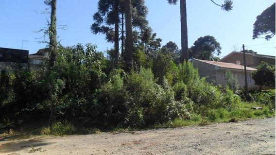 Terreno Para Venda Em Campo Largo, Jardim Das Acacias - 810060132 Acacias