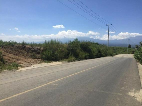 Venta De 65,000 Mts En Chipilo. Federal A Atlixco