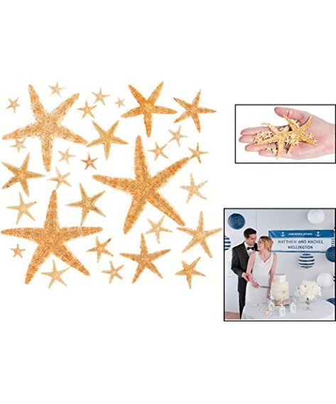 Fun Express Real Starfish Decoration (30 Piezas)