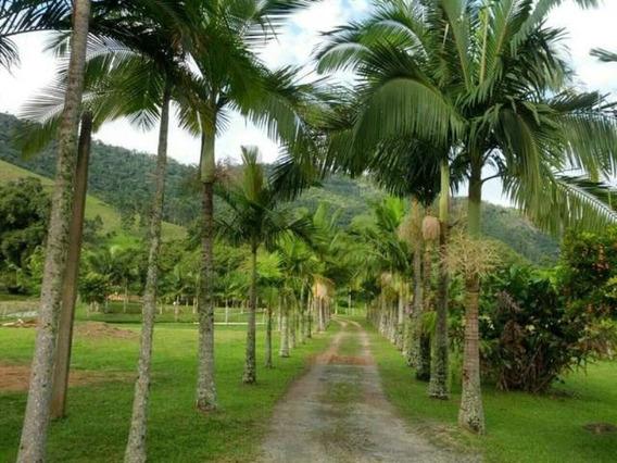 Sitio Em Camboriú - Aceita Permuta Em Balneário Camboriu 15mil M² - T102 - 3285723