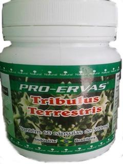 Kit 6 Tribulus Terrestris,pura, 500mg 360 Cápsulas Pró-ervas