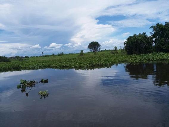 Fazenda Para Venda Em Barão De Melgaço, Zona Rural - 661881