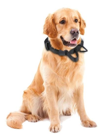 Tactic Hunt Dog Collar Nylon Liberação Rápida