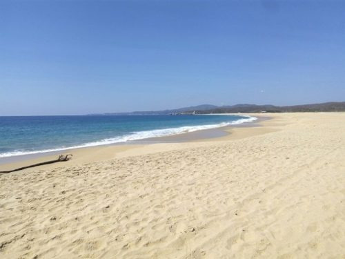 Hectarea En Venta Frente De Playa Macahuite A 30 Minutos De Puerto Escondido, Oaxaca.