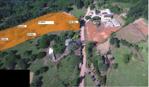 Área De Terra Localizado(a) No Bairro Estrada N 239 Em Riozinho / Riozinho - 1295