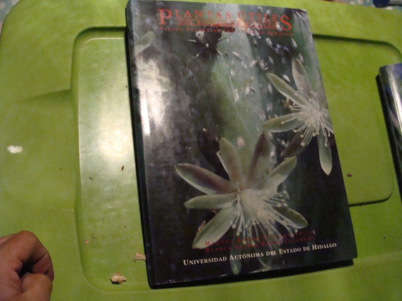 Plantas Utiles Del Estado De Hidalgo , Año 1995