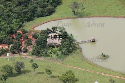 Fazenda Com 4 Dormitórios À Venda, 3000000 M² Por R$ 10.000.000 - Zona Rural - Caldas Novas/go - Fa0092