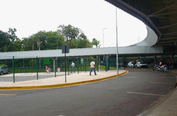 Área Residencial À Venda, Universitário, Campo Grande - Ar0043. - Ar0168