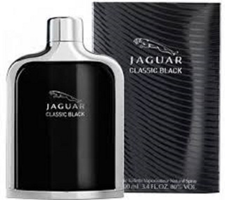 Jaguar Black Caballero 100ml
