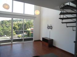 Citymax Alquila Apartamento En Zona 16
