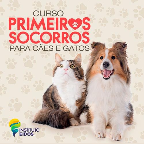 Imagem 1 de 1 de Primeiros Socorros Para Cães E Gatos