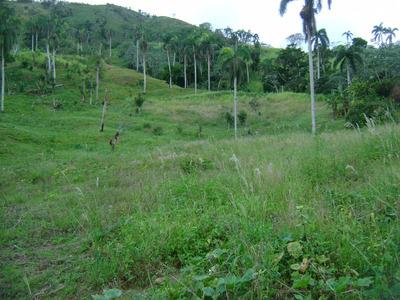 Terreno Próximo Al Pico Diego De Ocampo (280,483 M2)