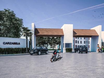 Desarrollo Carzabela Veracruz