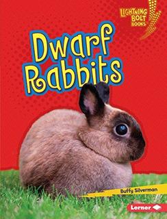 Conejos Enanos Rayo Libros