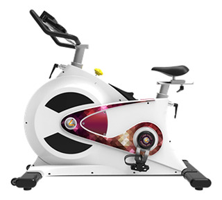 Bicicleta Fija Spinning Gfitness Stk-920