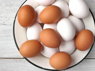 6 Maples De Huevos Blancos N1