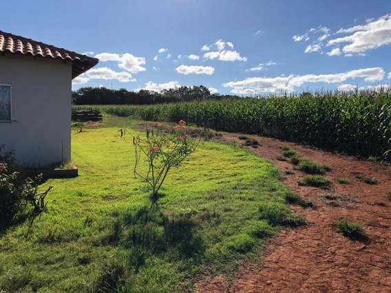Fazenda Em Zona Rural, Rio Verde/go De 200m² 3 Quartos Para Locação R$ 3.000,00/mes - Fa563179