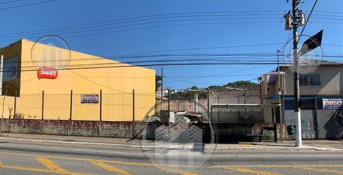Terreno Para Aluguel, 520.0 M2, Interlagos - São Paulo - 6546
