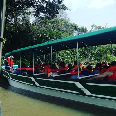 Tours A Monkey Island Panama 507 Tours