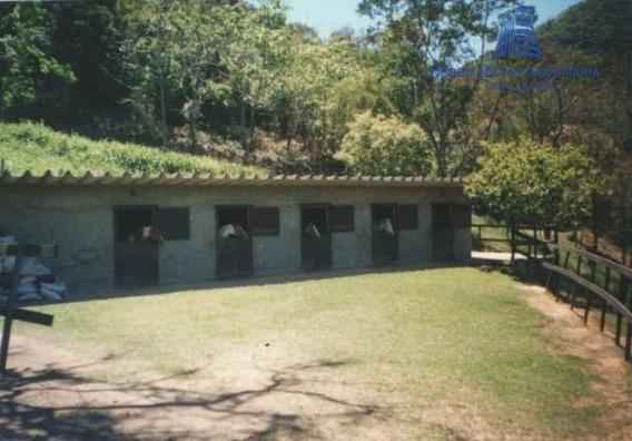 Sítio A Venda No Bairro Granja Mafra Em Teresópolis - Rj. - St 0170-1