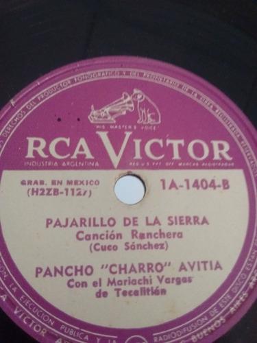 Pancho Charro Avitia Disco Pasta Pasta 1a-1404 C24