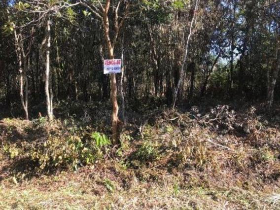 Terreno Escriturado Medindo 2400 Mts Em Itanhaém Litoral Sul