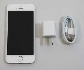 iPhone 5s Color Dorado Y Plateado (80)