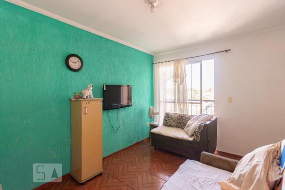 Apartamento Para Aluguel - Itaquera, 2 Quartos, 46 - 893049400