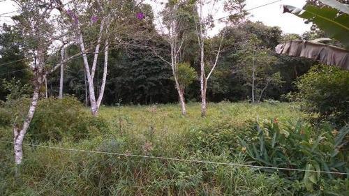 Terreno No Litoral Sul, Com 1000 M² Em Itanhaém/sp 4445-pc