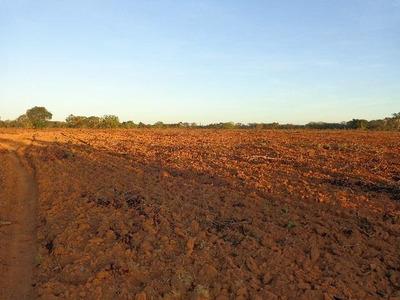 Fazenda Em Pium - To, Dupla Aptidão - 227
