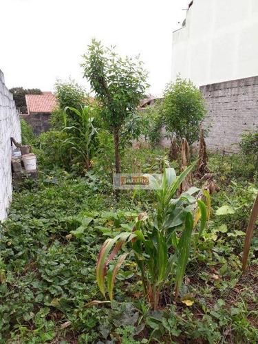Imagem 1 de 1 de Terreno À Venda, 280 M² - Jardim Rina - Santo André/sp - Te0979