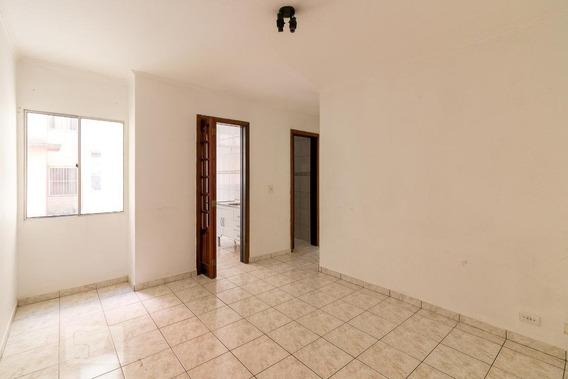 Apartamento Para Aluguel - Vila Rio De Janeiro, 2 Quartos, 55 - 893085768
