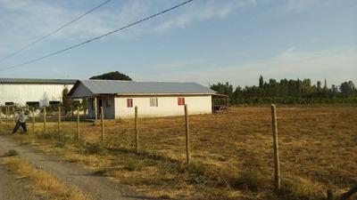 Parcela 10.000 M2 Con Casa, Parral, Camino A Catillo Km 12