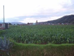 Terreno En San Jerónimo De Tunán