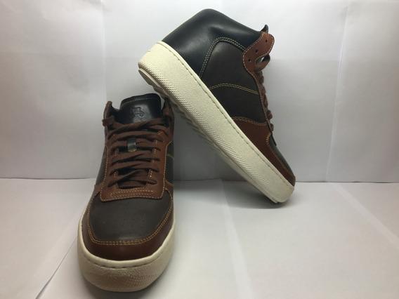 Sapato Coach