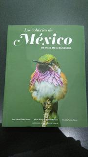 Los Colibríes De México, Un Viaje En Su Búsqueda.