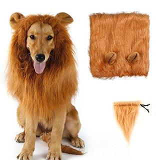 Lcfun Lion Mane Costume Para Cat Y Dog Pet Peluca Ropa Para